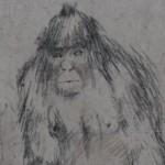 Ινστιτούτο μελέτης στη Ρωσία για τον… Bigfoot