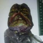 Νεκρός εξωγήινος εντοπίστηκε στη Ρωσία: αλήθεια ή hoax;