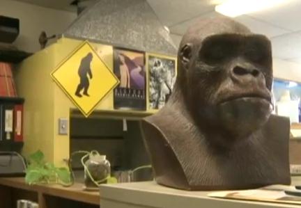 Νέα εμφάνιση του Bigfoot στις Η.Π.Α.; (video)
