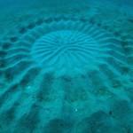 Θαλάσσια «crop circles» ανακαλύφθηκαν στην Ιαπωνία