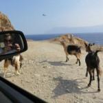 Γερμανοί τουρίστες φωτογράφισαν UFO στην Κρήτη;